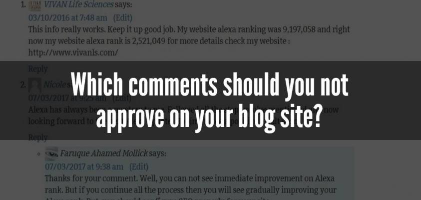 Which comments should you not approve on your blog site?